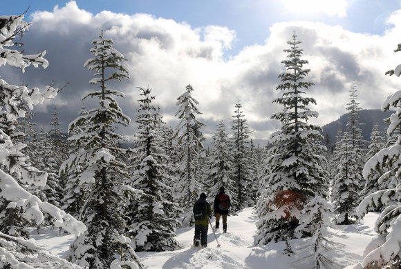 Photo of hikers in backcountry snow